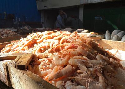 Abbassa-Market-Shrimp