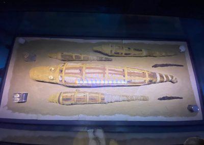 Kom-Ombo-Egypt-10