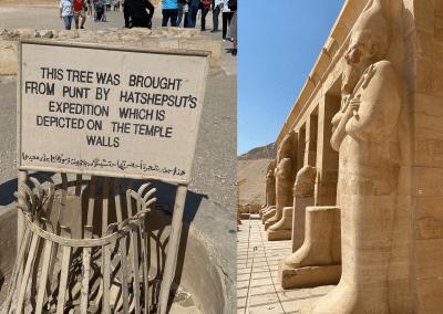 Mortuary-Temple-of-Hatshepsut-8